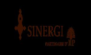 SINERGI SA